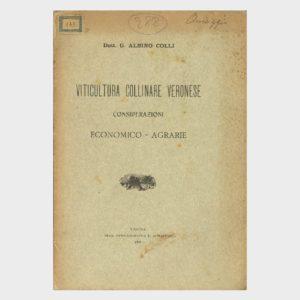 Book Cover: VITICOLTURA COLLINARE VERONESE (CONSIDERAZIONI ECONOMICO - AGRARIE)