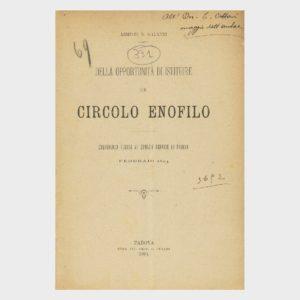 Book Cover: DELL'OPPORTUNITÀ DI ISTITUIRE UN CIRCOLO ENOFILO ( COMIZIO AGRARIO DI PADOVA )